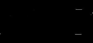 APC_logo_Black