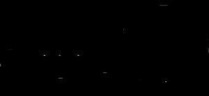 Seagate_Logo_Black